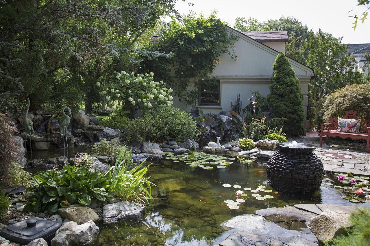 Construcci n de un estanque koi las 4 claves mas for Construccion de estanques